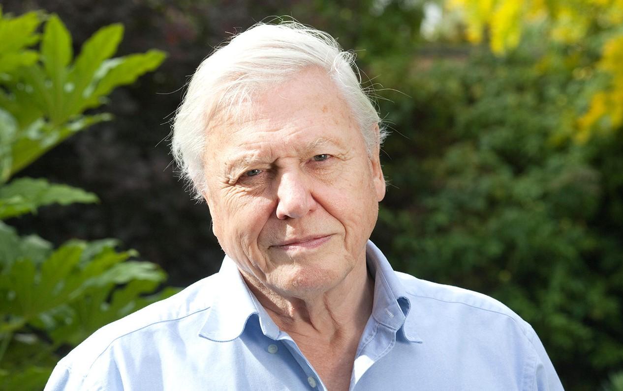 Sir David Attenborough, English broadcaster and naturalist, at his home in Richmond, Borough of Richmond upon Thames, England UK
